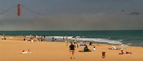 Crissy beach