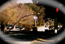 Park Presidio
