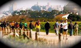 Crissy trail crowd